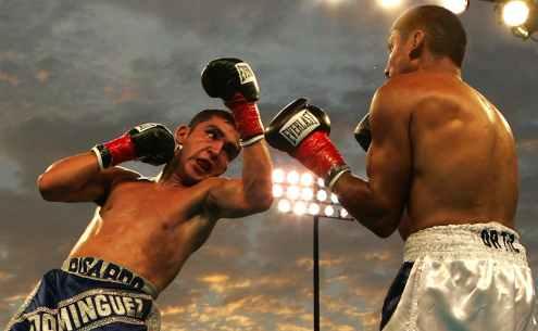 box-boxing-match-uppercut-ricardo-dominguez-78787.jpeg